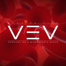 VEV: Viva Ex Vivo artwork